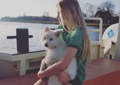penny weißer schäferhund6