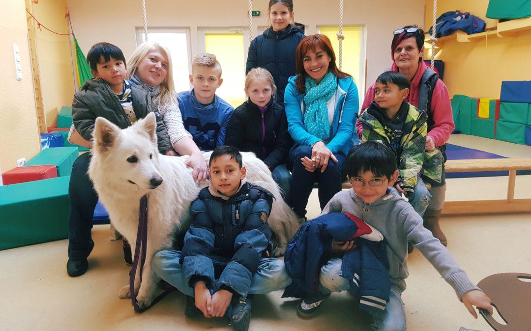 Vox Beitrag über unsere Hunde für tiergestütze Pädagogik