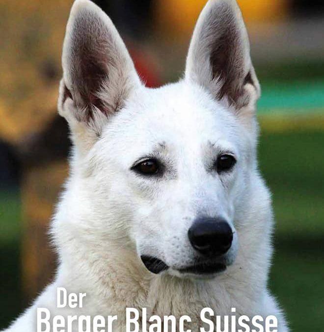 Celtic´s Weiße Schäferhunde in der Futterpost